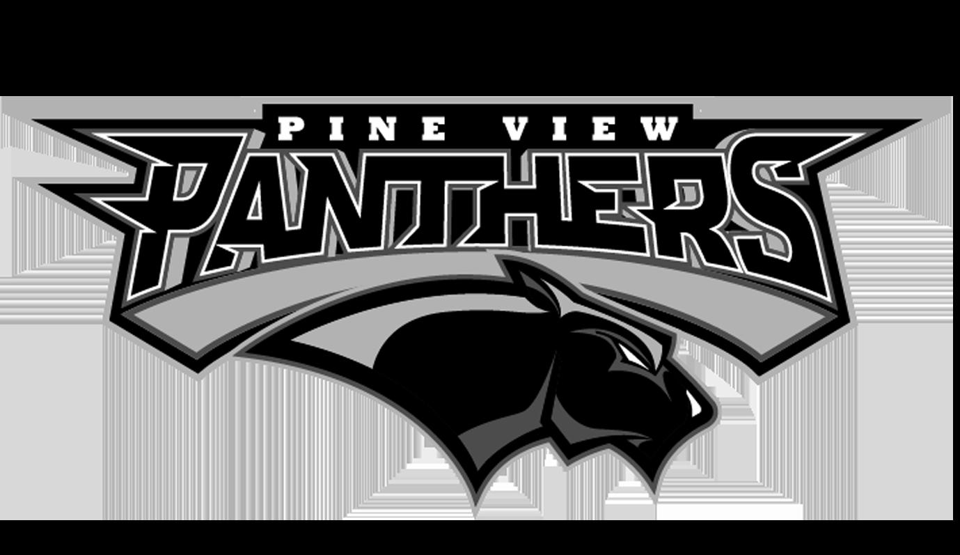 Pine View High School